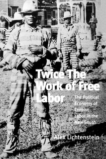 Image of the cover of the book Twice the Work of Free Labor written by Alex Lichtenstein.